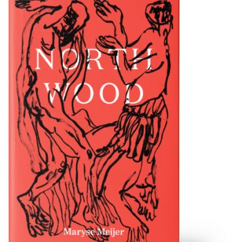 "Night Terrors: A Review of ""Northwood"" by Maryse Meijer"