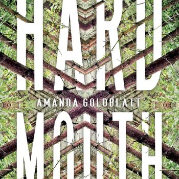 "The Complexities of Grief and Sadness: Author Amanda Goldblatt discusses ""Hard Mouth"""