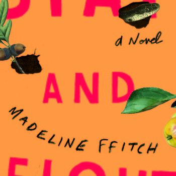 "Family Versus Snakes and States: A Review of ""Stay and Fight"" by Madeline ffitch"
