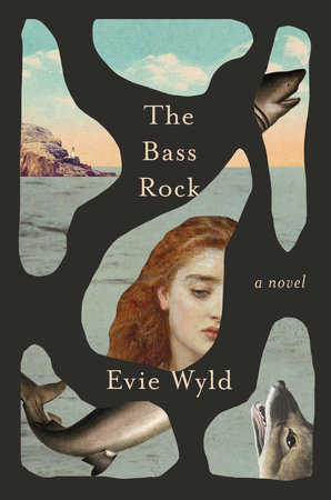 "A Radical Future: A Review of Evie Wyld's ""The Bass Rock"""